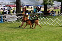 PROOFS St Croix Valley Kennel Club August 2015