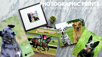 Photographic Prints Kathleen Riley Photography